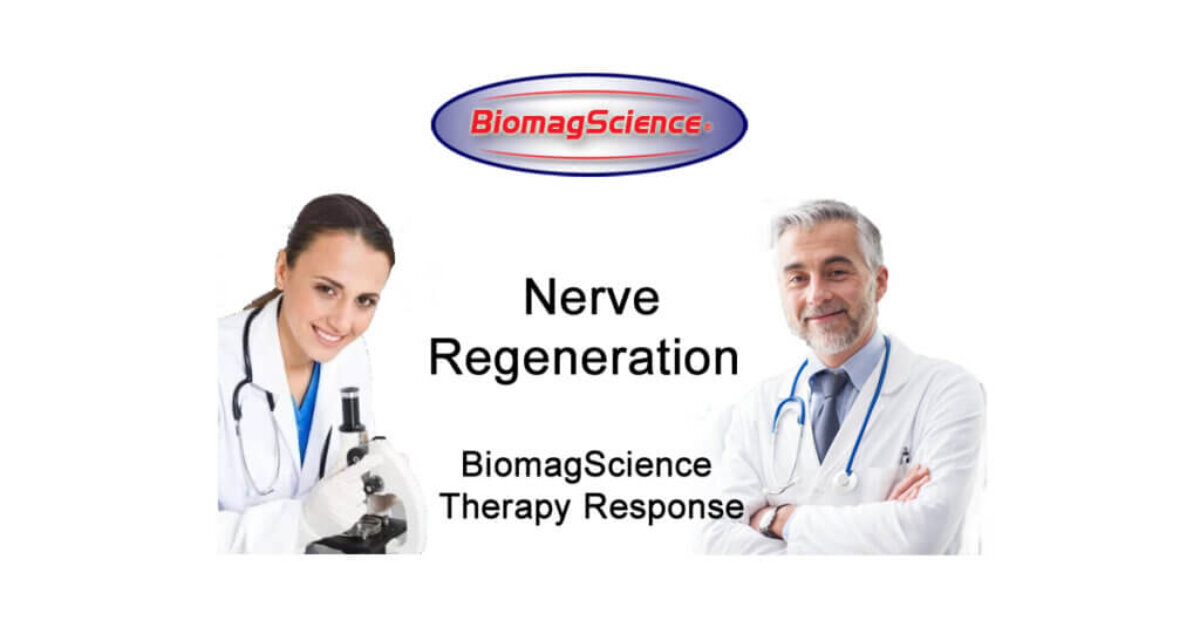 biomagscience-condition-nerve-regeneration-20200316