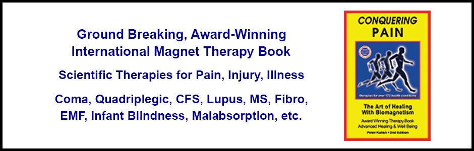 Ground breaking, award-winning international magnet therapy book